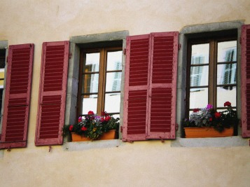 pink windows in colour with grain
