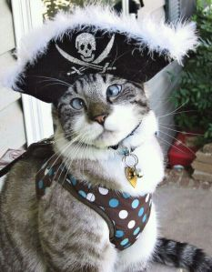 Spangles, the cross-eyed pirate car